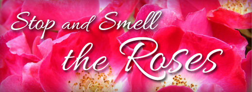 stop-and-smell-the-roses